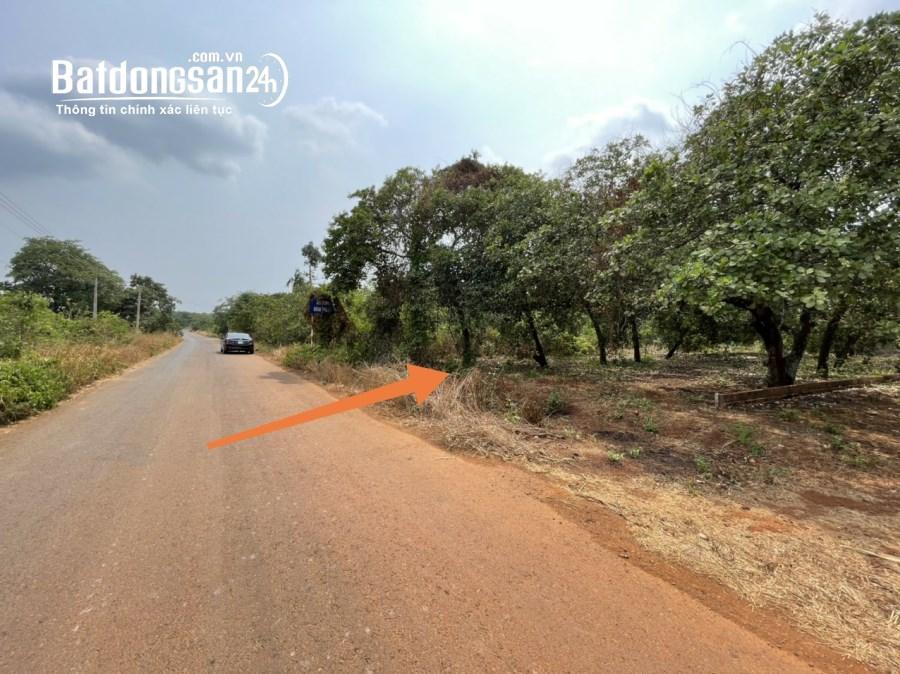 1029m2 đất mặt tiền đường đang mở rộng 32m Phước Bình chỉ với 3TrXX/m2,sổ hồng