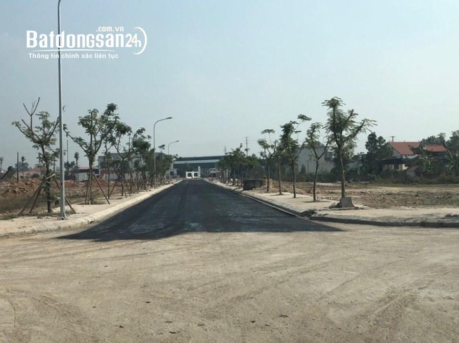 Bán đất nền Chí Linh Palm City - Chí Linh- Hải Dương