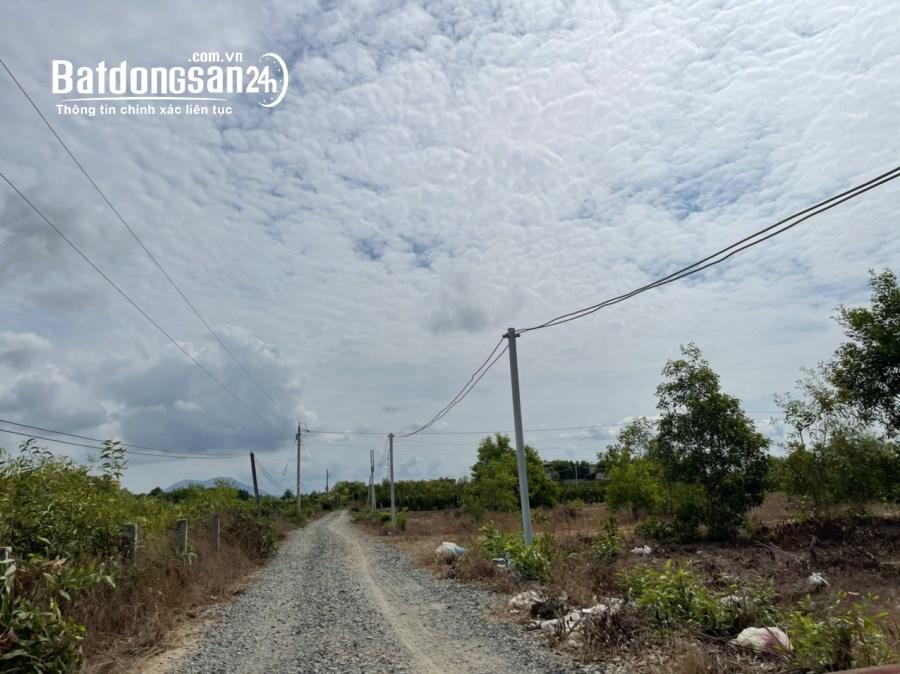 Bán đất Đường Lê Quang Định, Xã Tân Tiến, Thị xã La Gi