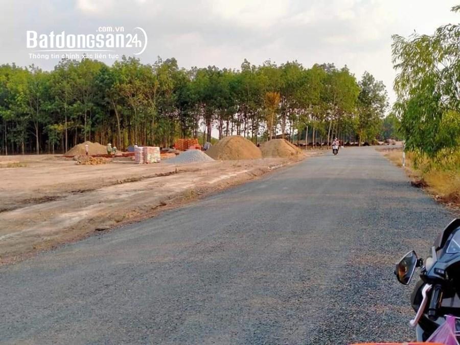 1000m đất ở Nha Bích 750tr có giảm chút giá cho ae mua nhanh