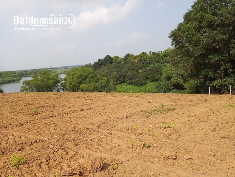 Cần bán bán đảo rộng 2ha - bám hồ - Lương Sơn, Hoà Bình