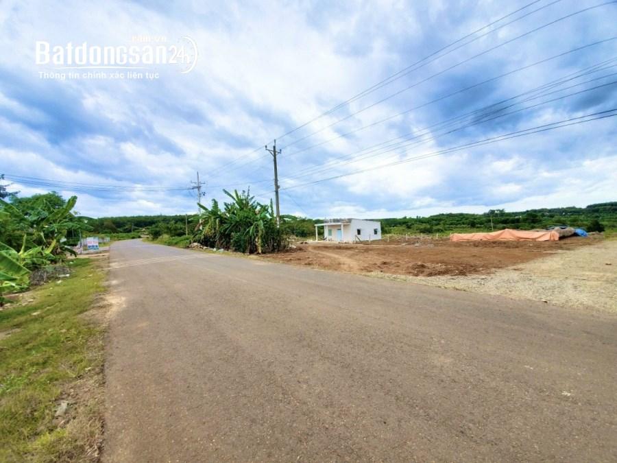 Bán biệt thự, villas Đường 51, Xã Phước Bình, Huyện Long Thành