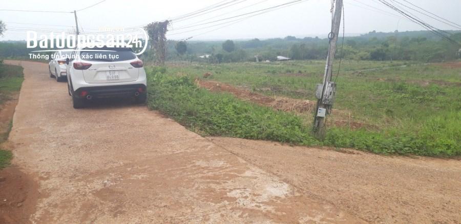 Bán đất Đường 13, Xã Thanh Phú, Thị xã Bình Long