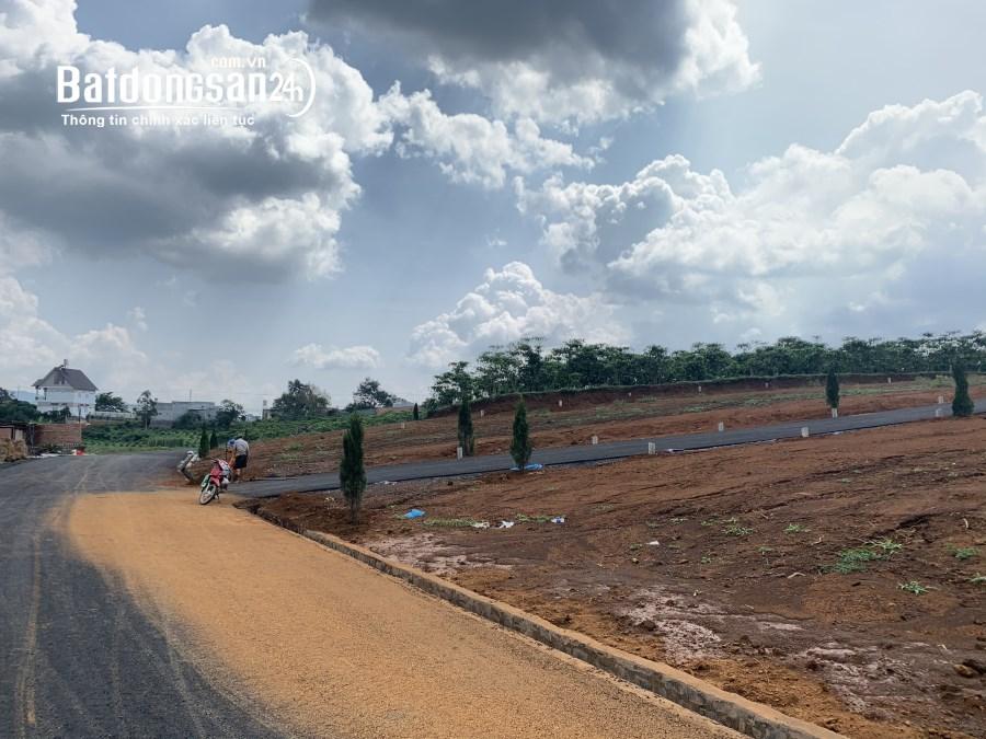 Đất đầu tư thanh khoản nhanh mặt tiền Nguyễn Văn Cừ TP Bảo Lộc
