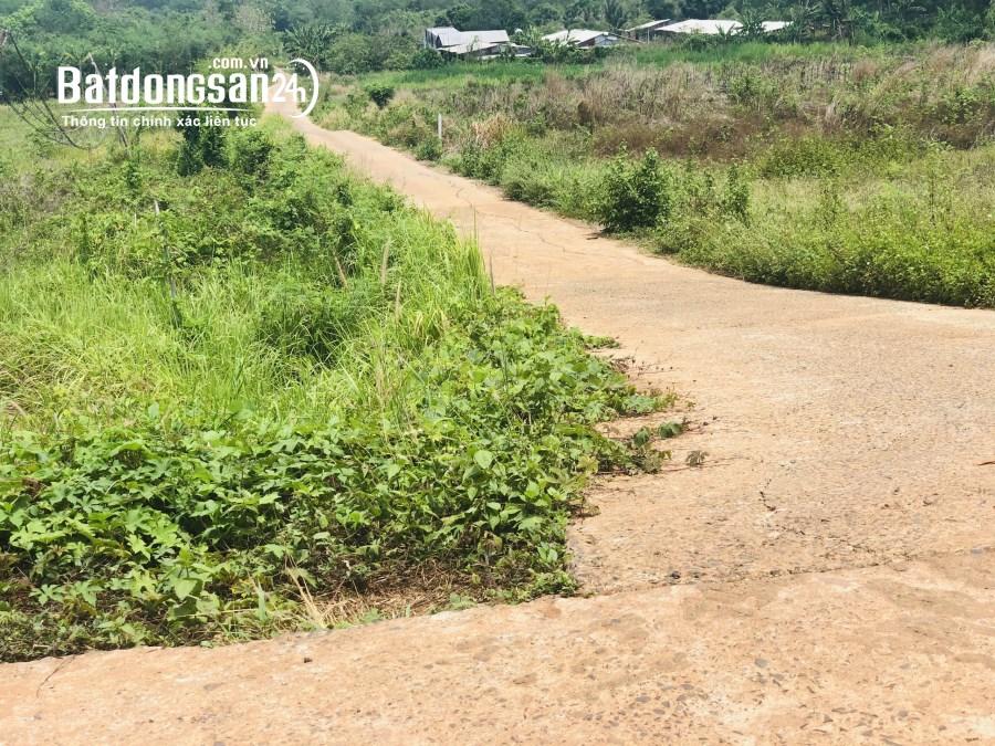 Bán đất nền giá rẻ trung tâm Thị Xã Bình Long - Bình Phước, giá 360triệu/1000m2
