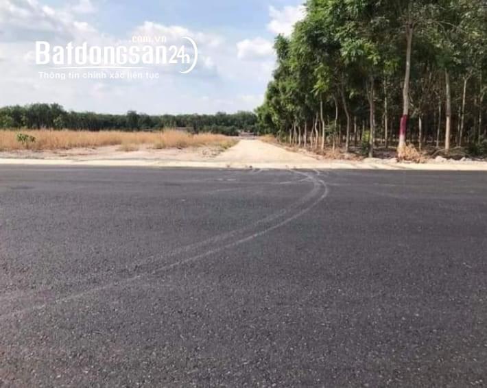 Bán đất Đường 14, Xã Nha Bích, Huyện Chơn Thành