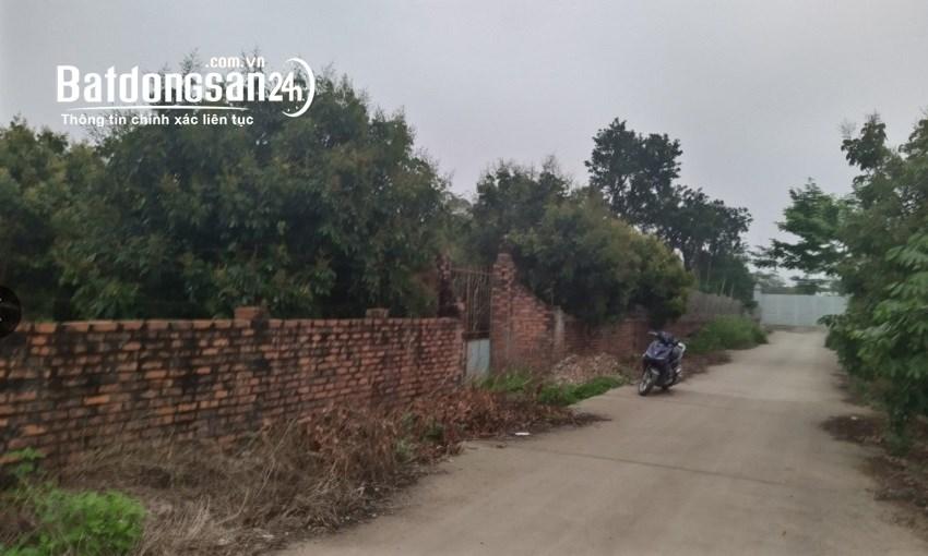 Bán nhà vườn, trang trại Xã Đại Thành, Huyện Quốc Oai