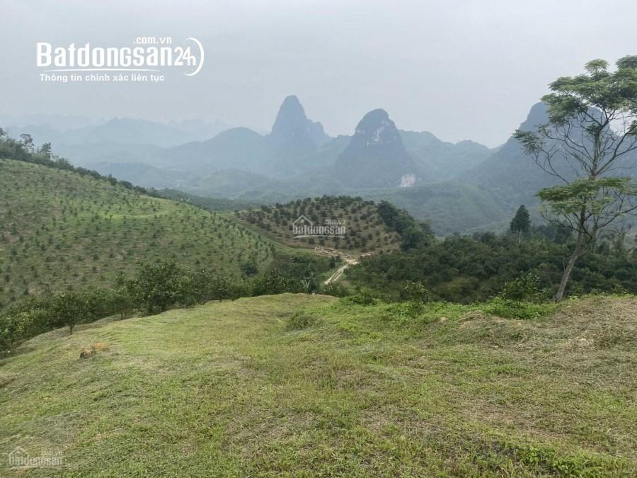 bán trang trại 12 ha, Xã dân hạ, Huyện Kỳ Sơn tỉnh hòa bình