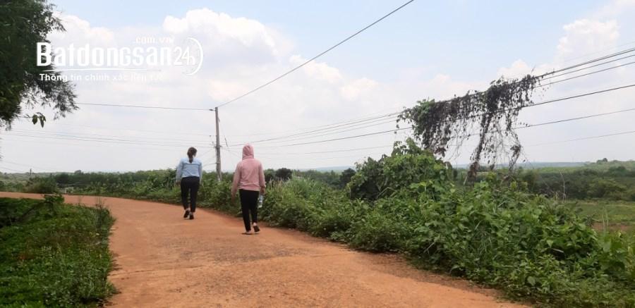 Đất Bình Phước giá rẻ 1000m2 sổ sẵn còn 175 triệu