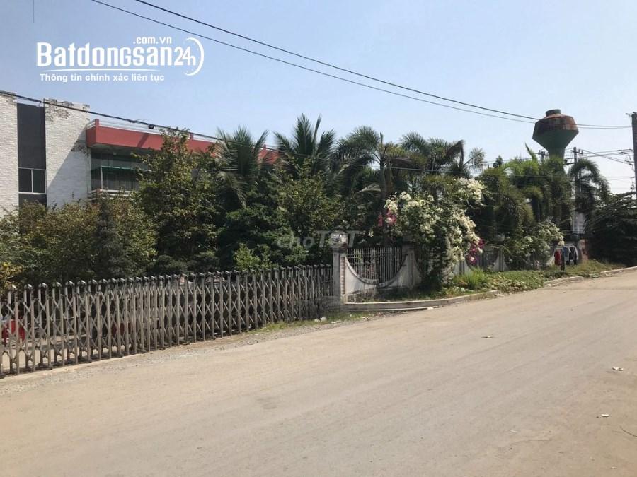 Cho thuê mặt bằng kho xưởng Huyện Đức Hòa - Long An