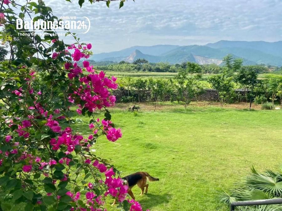 Bán nhà vườn, trang trại Đường Liên Xã Chính Lý, Xã Cư Yên, Huyện Lương Sơn