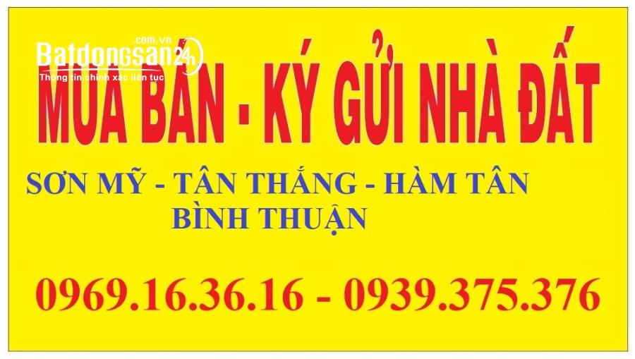 Cần Mua Đất Xã Sơn Mỹ Hàm Tân Bình Thuận chính chủ Giá Cao