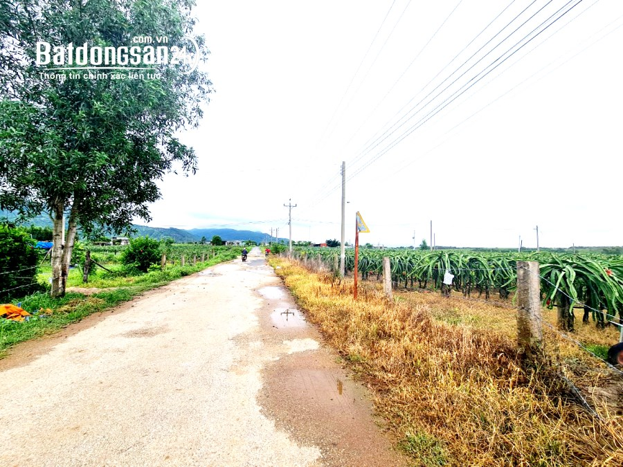 ĐẤT THỔ CƯ Đường MT 25x59m, 3 tỷ15, Sơn Mỹ 2, Hàm Tân, Bình Thuận - 0933444019