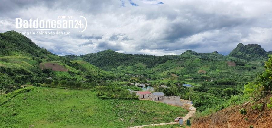 Chính Chủ bán 5100m2 đất rừng sản xuất Cao Phong Hoà Bình, giá chỉ 550tr