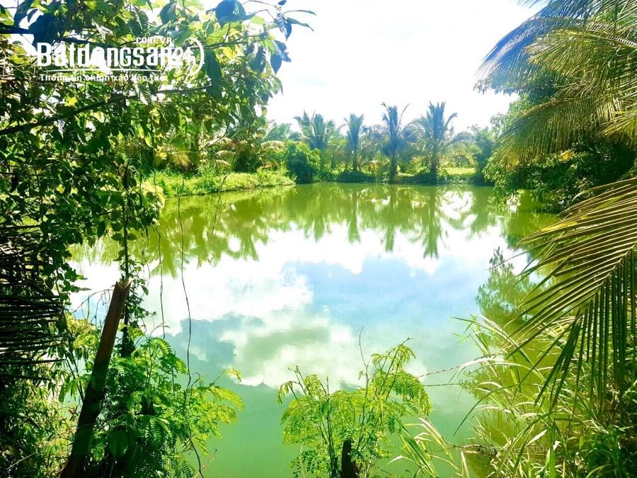 Bán đất Đường Tố Hữu, Phường Khánh Xuân, TP Buôn Ma Thuột