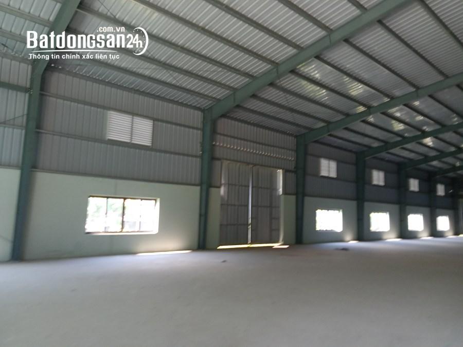 Cho thuê nhà xưởng may mặc 10000m2 tại Liên Lộc Hậu Lộc, Thanh Hóa