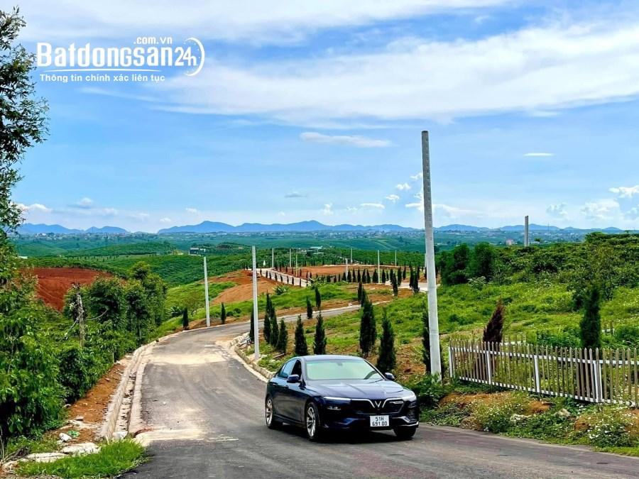 Bán đất nền phân lô Đường 20, Tp Bảo Lộc
